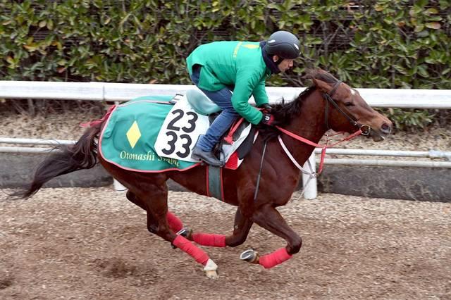 ほぼ馬なりで50秒7を記録するモズスーパーフレア