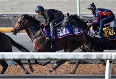 馬なりでラスト1F11秒台を刻むステルヴィオ
