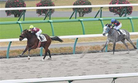 新馬、黒竹賞と圧勝続きで大物感タップリのデアフルーグ