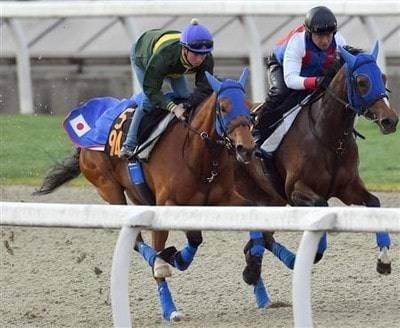 馬なりで機敏な動きを見せるジョディー