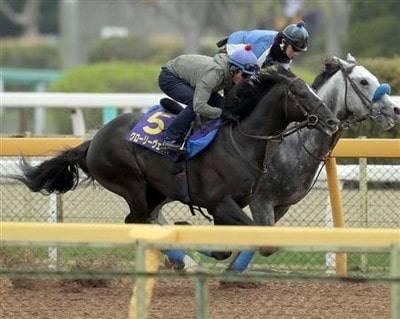 戸崎騎手を背に追い切ったグローリーヴェイズ
