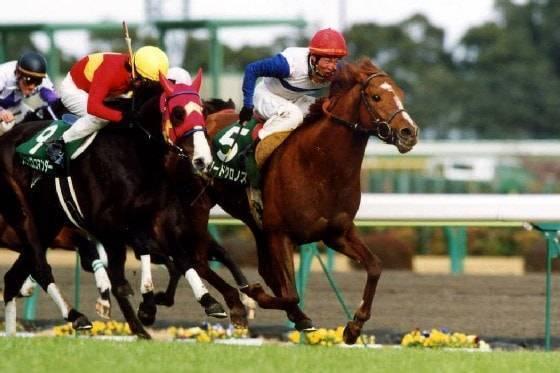 ロードクロノス(シンコウラブリイ1995)