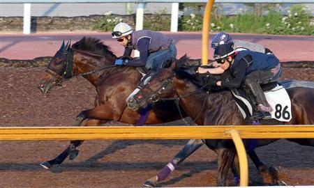 3頭併せで古馬相手に抜群の動きを見せたレッドアネモス