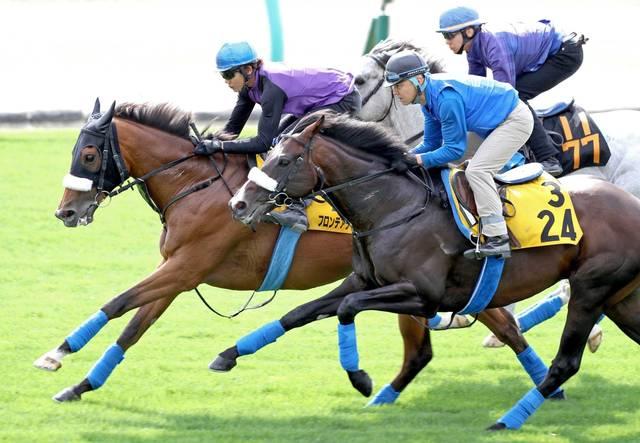 牡馬2頭を相手に楽々と先着するフロンテアクイーン