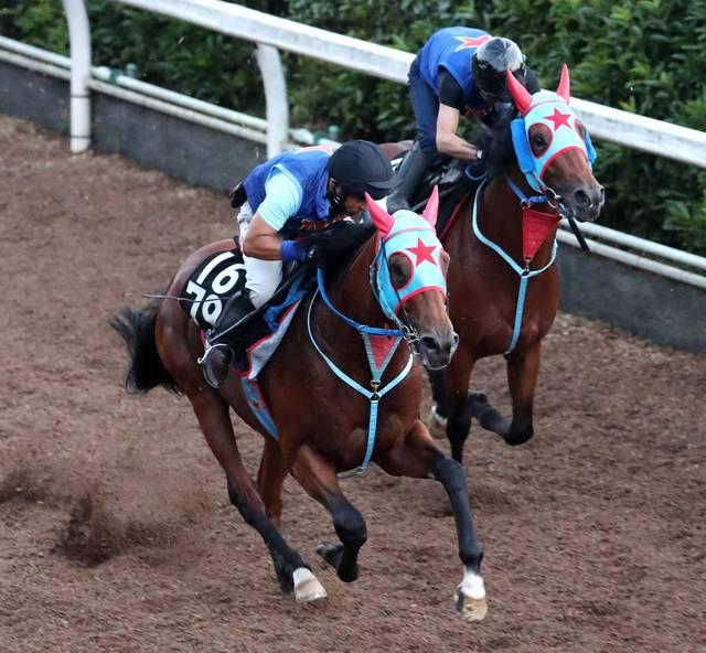 力強いフォームで併走馬に先着するサトノギャロス