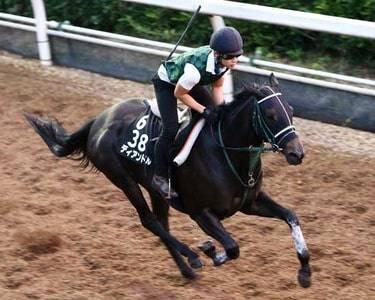3歳牝馬の勢いはなかなか止まらないディアンドル