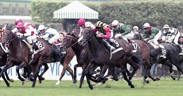 1994年に武豊騎手騎乗のホワイトマズルは6着