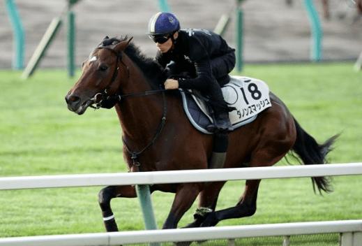 絶好調の川田騎手を背に追い切るダノンスマッシュ