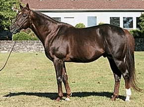 Mr. Greeley(Long Legend1992)