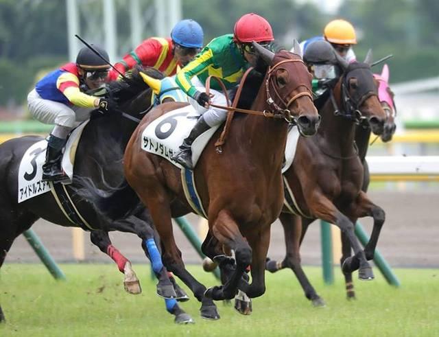 前走は大外から一気の追い込みで他馬を一蹴したサトノダムゼル