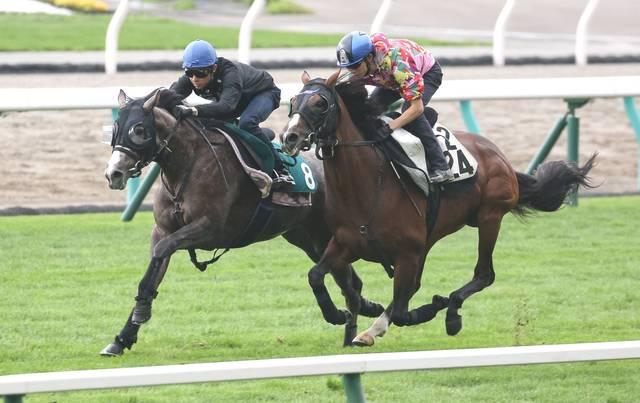 OP馬と併せて食らい付くサトノゴールド(左)