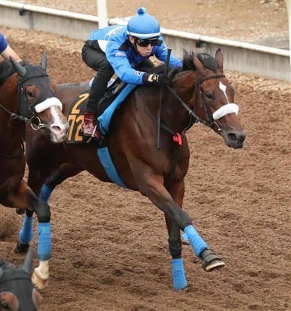 併走馬に楽々と先着するカレンブーケドール