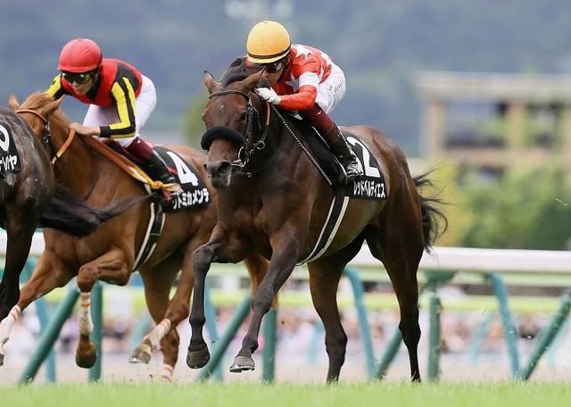織姫賞を+馬体重ながら完勝したレッドベルディエス