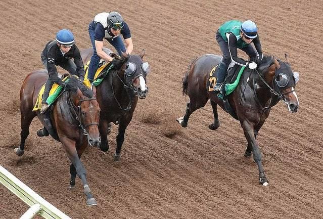3頭併せできっちり先着を果たしたスイープセレリタス(右)