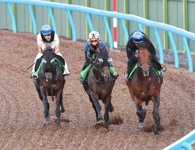 藤沢和雄廐舎流の3歳馬3頭で併せ馬をするルヴォルグ(左)