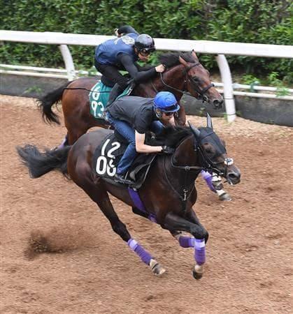 坂路を併せ馬で颯爽と駆け上がるワールドプレミア
