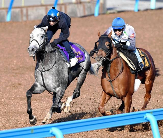 休み明けで国際GⅠ馬の面目を保ちたいウインブライト(左)