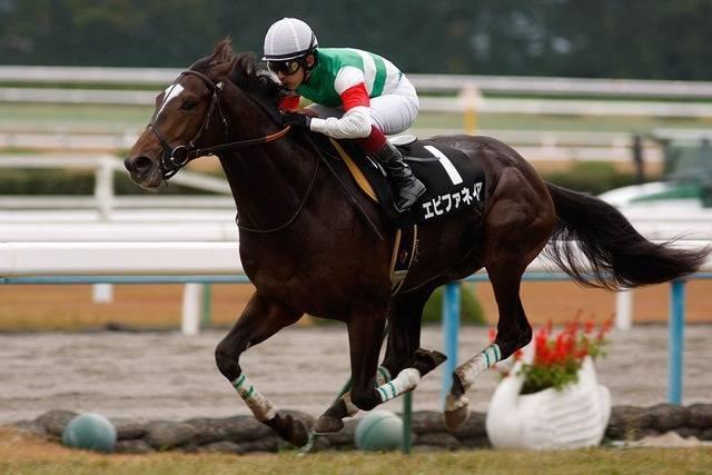 エピファネイア(シーザリオ2010)