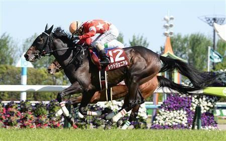 京都新聞杯では後のダービー馬を差し切ったレッドジェニアル