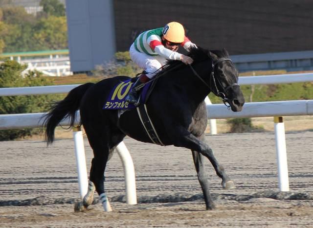 ランフォルセ(ソニンク2006)