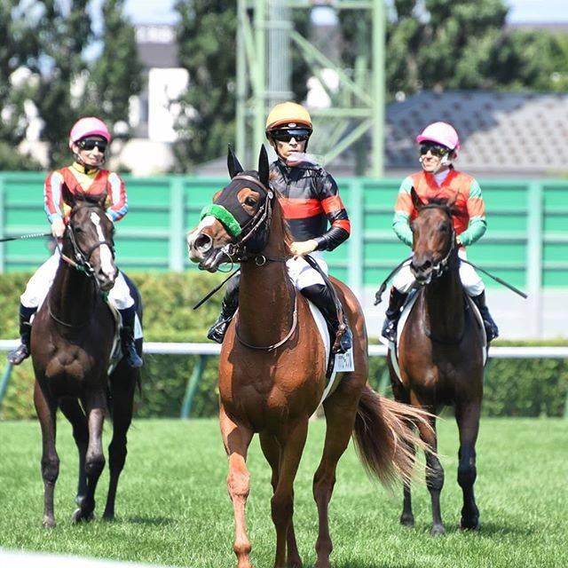 川田騎手を背に初戦を圧勝で引き揚げて来るホウオウピースフル
