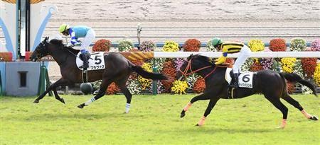 京都コースで番手から鮮やかに抜け出した新馬戦でのブラヴァス