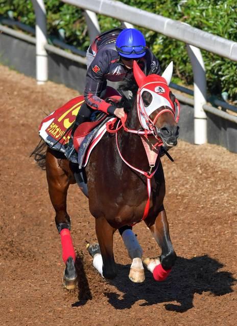 坂路で馬なりの調整も動きは抜群のラヴズオンリーユー