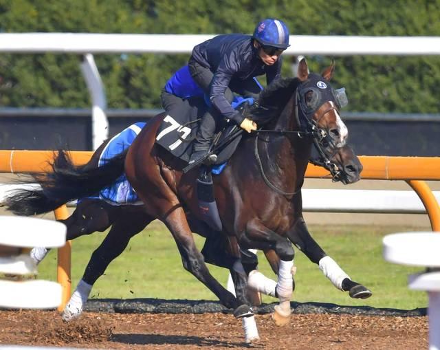 川田騎手が3週連続で乗り込む程に熱がこもるアルジャンナ