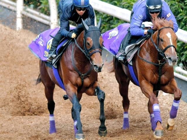川田騎手を背に併せ馬できっちりと仕上げるワグネリアン