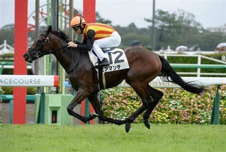 新馬戦では重馬場に関わらず最速の上がりで差し切ったミアマンテ