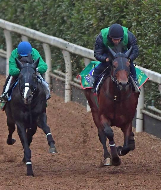 馬体がこの短期間で更に成長したクリソベリル(右)