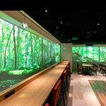 森林浴をデジタル化、自然の癒しを都内カフェで体験可能に