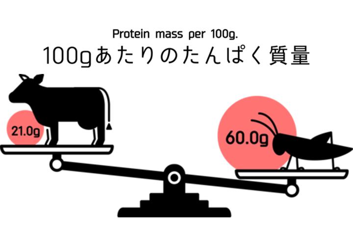 コオロギに含まれるタンパク質量は牛の約3倍